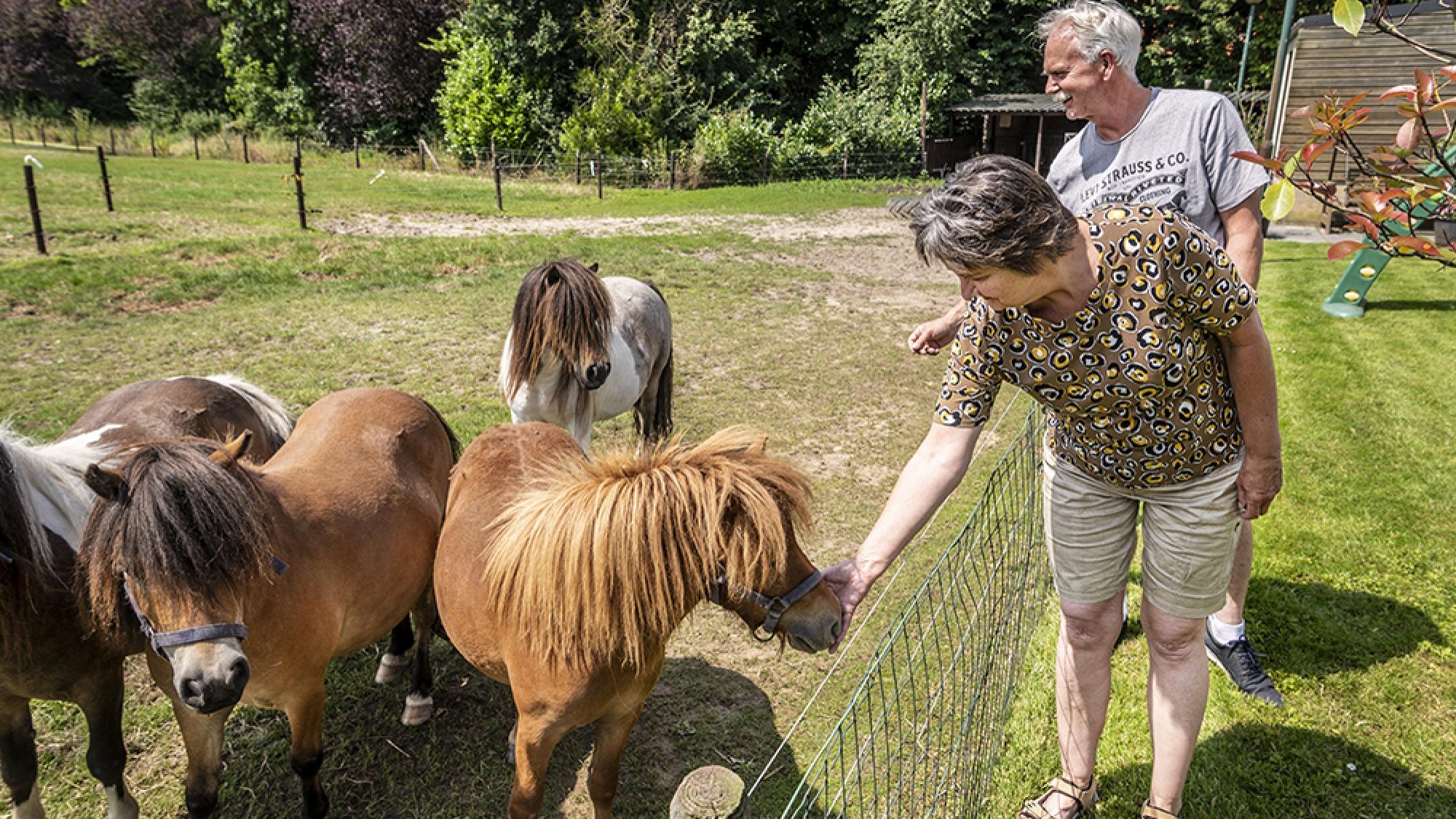 Hans en Annemarie van Nuland, de eerste eigenaren van een appartement in de woontoren bij hun paarden